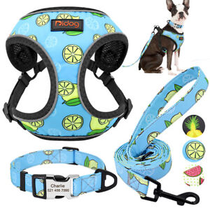 Personalised Dog Harness Nylon Dog Collar and Lead for Small Dogs Free Engraved