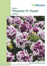 Gefüllte Petunie Pirouette Purple Petunia Dauerblüher 20 Pillen Samen