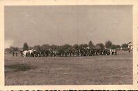 FOTO DEL 1939 - GRUPPO DI CAVALLI DEL REGIO ESERCITO  - NOVARA -