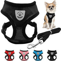 Dog Harnesses for Small Dogs Mesh Breathable Cat Walking Harness and Leash Set