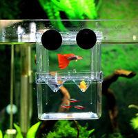 Aquarium Fish Breeding Box Tank Fry Trap Hatchery Floating Breeder Nursery Box