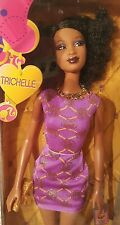 Trichelle S.I.S. So In Style African American Barbie Doll HTF Purple Dress