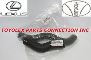 OEM LEXUS LS460 RWD NEW OEM 16571-38050 & 16572-38100 RADIATOR HOSE KIT