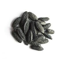 50g Tonka Bohnen aus Brasilien A-Qualität