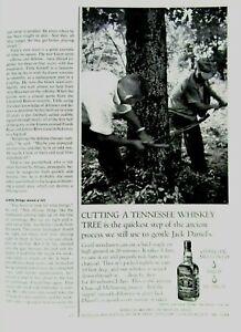 """1963 Jack Daniel's Cutting Tn. Whiskey Tree 1/2 page Original Print Ad 8.5 x 11"""""""