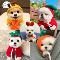 Fruit Pets Dog Clothes Sweaters Warm Soft Teddy Puppy Autumn Winter Costume