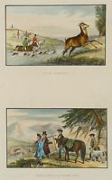 """Stag Hunting"", Hirschjagd, Highlands, Scottish, Britische Jagdgesellschaft"