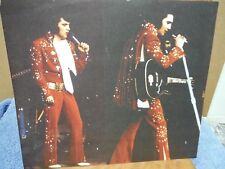 Elvis Presley Red Jumpsuit Mini Double Poster
