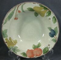 Mikasa Fruit Panorama DC014 Rimmed Fruit Dessert Bowl Country Classics