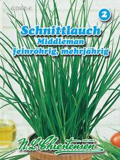 Cebollino, middleman, semillas, AJOS Schoenoprasum, hierbas, chrestensen, NLC 2