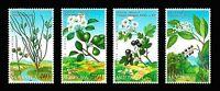 Moldova 2004 Flowers Plants Fruiting shrubs 4 MNH stamps