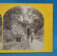 1860/70s Ireland Stereoview Photo Ruined Gatehouse Woodlands Co. Dublin