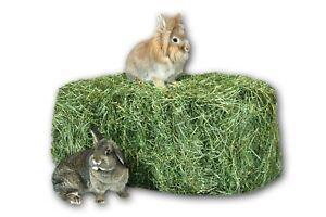 Heu 20kg Grummet Heu-Scheune® 2.Schnitt Heuballen Futter für Kaninchen