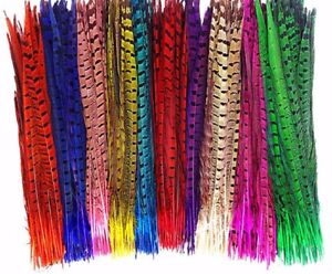 Pheasant Tail Feathers 25-30cm Colour Fly Craft Hat Arts Decorations Wedding UK