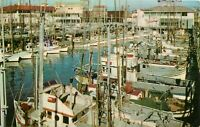 Chrome Postcard CA J244 Fishing Fleet San Francisco Fishermans Wharf Harbor