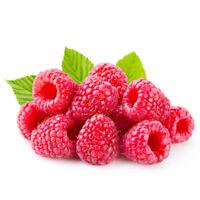 200pcs rojo frambuesa planta semillas Rubus idaeus arbusto semillas de frutas