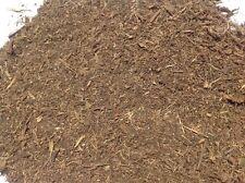 Sceletium Tortuosum 100% pure (Kanna)  50g organically grown in South Africa