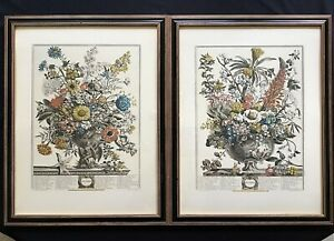 Colonial Williamsburg Furber Flowers Handcolored Engravings / Original CW Frames