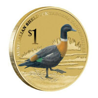 2013 Birds Australian Shelduck Tuvalu $1 Dollar Coloured UNC Coin Carded