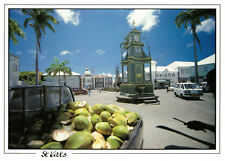 Saint Kitts: Midday Coconuts, Caribbean Rare Postcard Posted July 1997