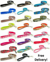 Ancol Puppy / Dog Lead Various Designs Inclusing Skull, Paw, Bone, Colours etc