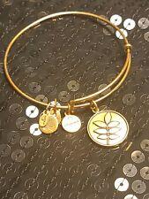 Alex and Ani Eco Bracelet