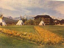 Glacier National Park Montana Glacier Park Hotel Tepees Vintage Postcard