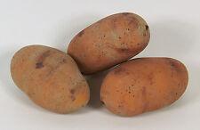 Designer Decorative Three (3) Artificial Faux Fake Yellow Potato Vegetable