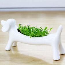 Decorative Dog Design White Ceramic Plant Flower Pot Succulent Planter Flowerpot