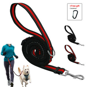 Upgraded Bungee Dog Leash for Medium Large Dogs Shock Absorbing Training Leads