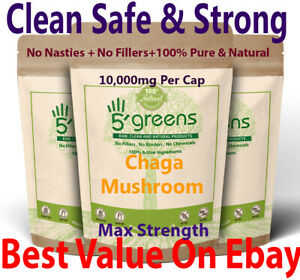 Chaga Mushroom Extract Capsules 10,000mg - 200mg Polysaccharides Strong Vegan