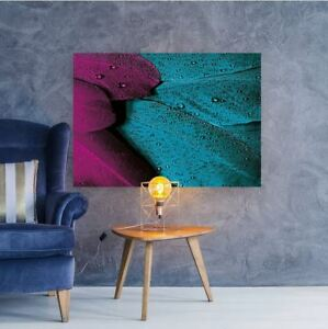 plumage-feather-bird-pink-COLORFUL WALL ARTS high quality Canvas home decor