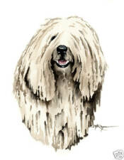 Komondor Dog Painting Art 13 X 17 Print by Artist Djr
