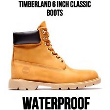 Timberland Men's 6 Inch Basic Waterproof Boots Padded Collar