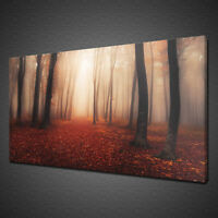 MYSTERIOUS RED FOREST CANVAS PICTURE PRINT WALL ART LANDSCAPE HOME DECOR