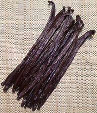 10 PNG vanilla beans/Pods grade AA New Harvest - Best Quality