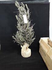 "24"" Unlit Vienna Twig Artificial Christmas Tree"