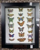 Emek Dead And Company Butterfly Pin Set Of 21 Shadow Box Numbered Edition XX/150
