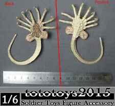 Alien Predator Prometheus Star Beast Facehugger Larva 1/6 Scale Model Toy Figure