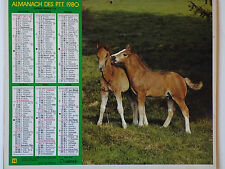 CALENDRIER ALMANACH PTT 1980 REGION PARISIENNE - photo CHEVAL PERROQUET