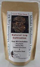 Maitake Mushroom Log Growing Log Kit