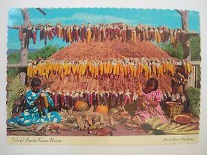 US Colorful Apache Harvest by Indiana Women Postcard Arizona