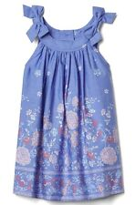 Baby Gap Girl Toddler Floral Border Dress Flower Bow Blue Size 6-12 Months