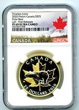 2020 $25 CANADA SILVER PROOF GOLD PLATE PIEFORT NGC PF69 UC POLAR BEAR PIEDFORT