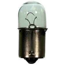 Tail Light Bulb-DIESEL, Turbo NAPA/LAMPS-LMP 17311