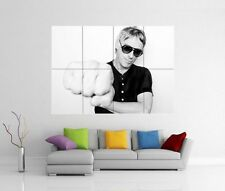PAUL WELLER DRAGONFLY GIANT WALL ART PICTURE PRINT PHOTO POSTER J11