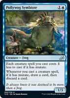 THE ORPHANGUARD X4 Ikoria IKO Magic MTG MINT CARD FOIL KAHEERA