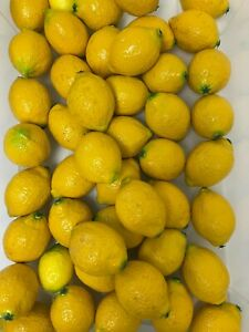 Bundle Plastic Artificial Lemons Veg Fruit Display Props x40 Pieces P291H2