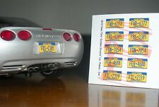 NEW YORK current-style miniature LICENSE PLATES for 1/25 scale MODEL CARS