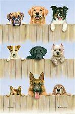 """K-9"" Dogs Cotton Blend Dog Tea Towel -  McCaw Allan"
